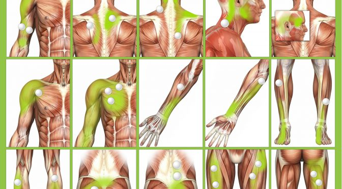 Massage Trigger Points For Pain Relief